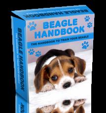 Beagle Handbook WP HTML PSD Template. (Englische PLR)