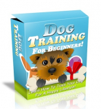 Dog Training HTML and PSD Template. (PLR)
