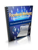 Facebook Ads. (PLR)