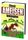 Clever Ameisen bekämpfen.